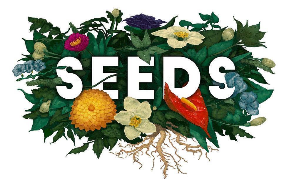 Seeds Part 2