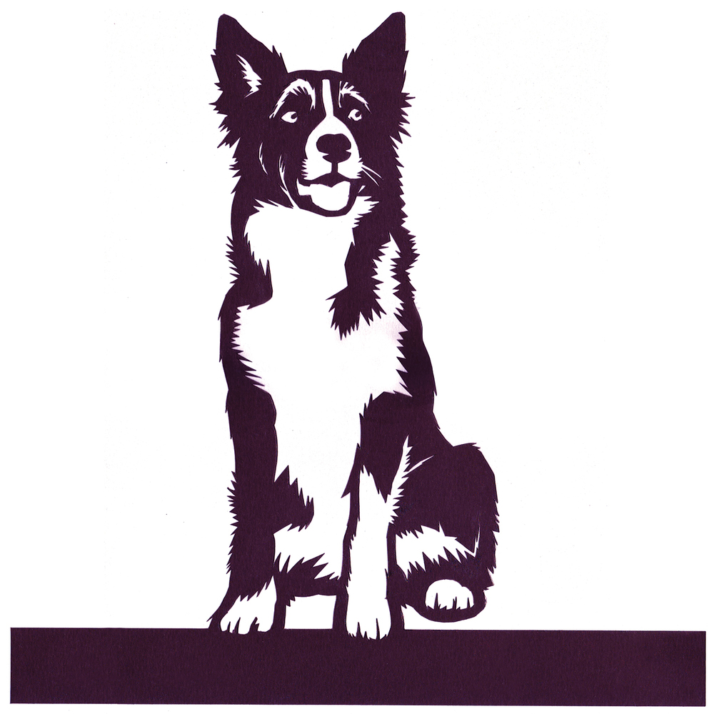 Border Collie Papercut  cut card