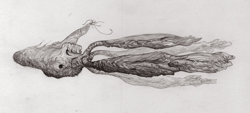 creaturejournal: Pencils for the next critter! Lovely as always.