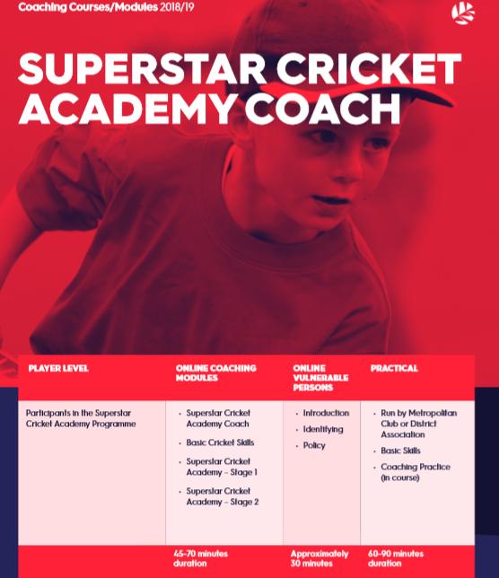 Superstar Cricket.PNG