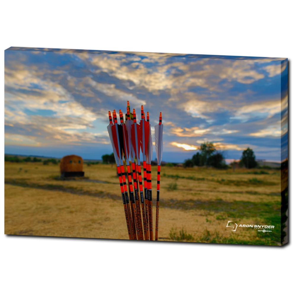 Black Eagle Arrows $146.99