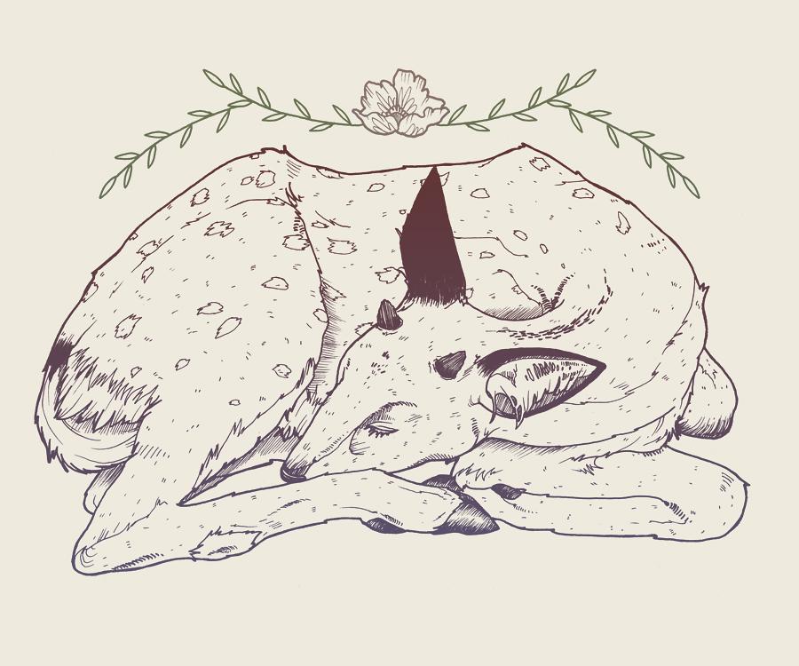 deerr.jpg