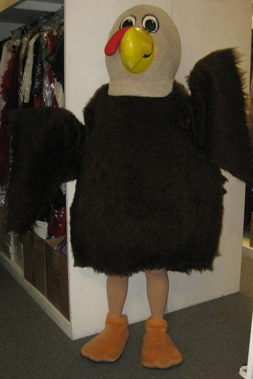 Capital Costumes 002 (2).JPG