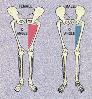 q-angle-men-vs-women.jpg