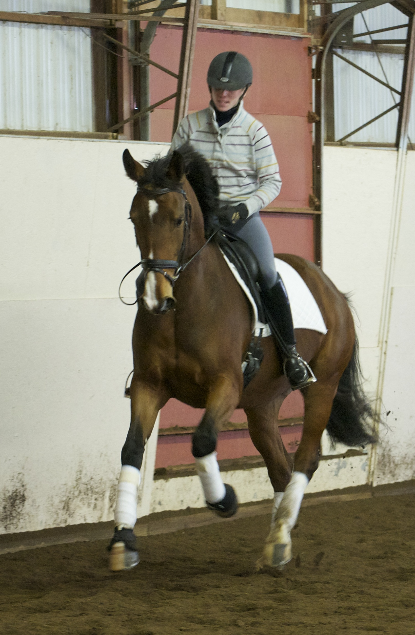 Emily riding Christina Varrasso's mare, Ella, during a training session in February 2014.  (Photo by Mark Donaldson)