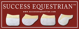 Success E Logo sm.jpg