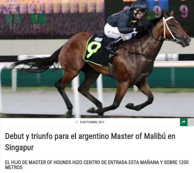 MASTER OF MALIBU, foto gentileza Turfdiario.com