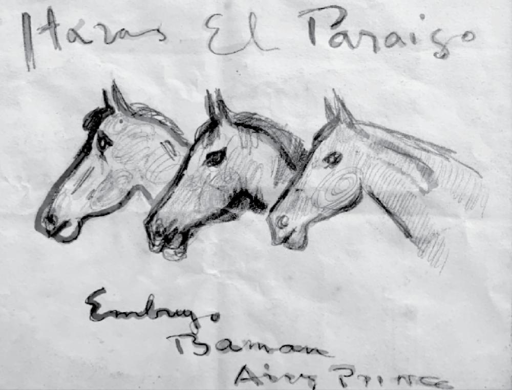 Boceto de Ernesto Pueyrredon