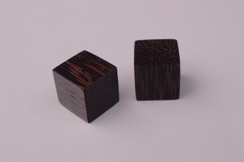 #5: Black Palm