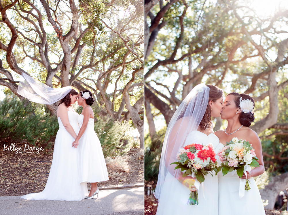 Santa Barbara Wedding Photographer - dip28.jpg