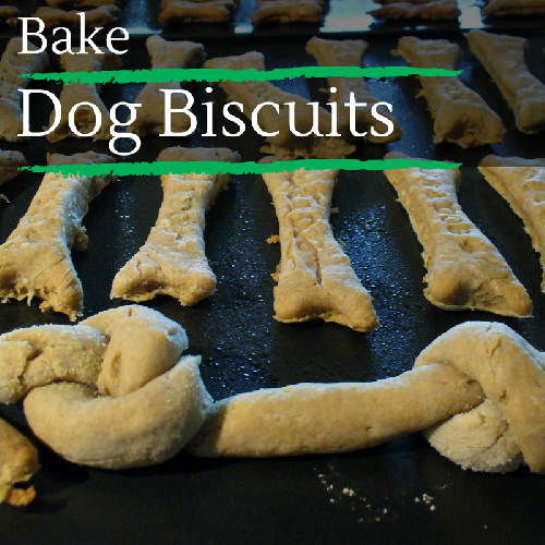 Bake Dog Biscuits