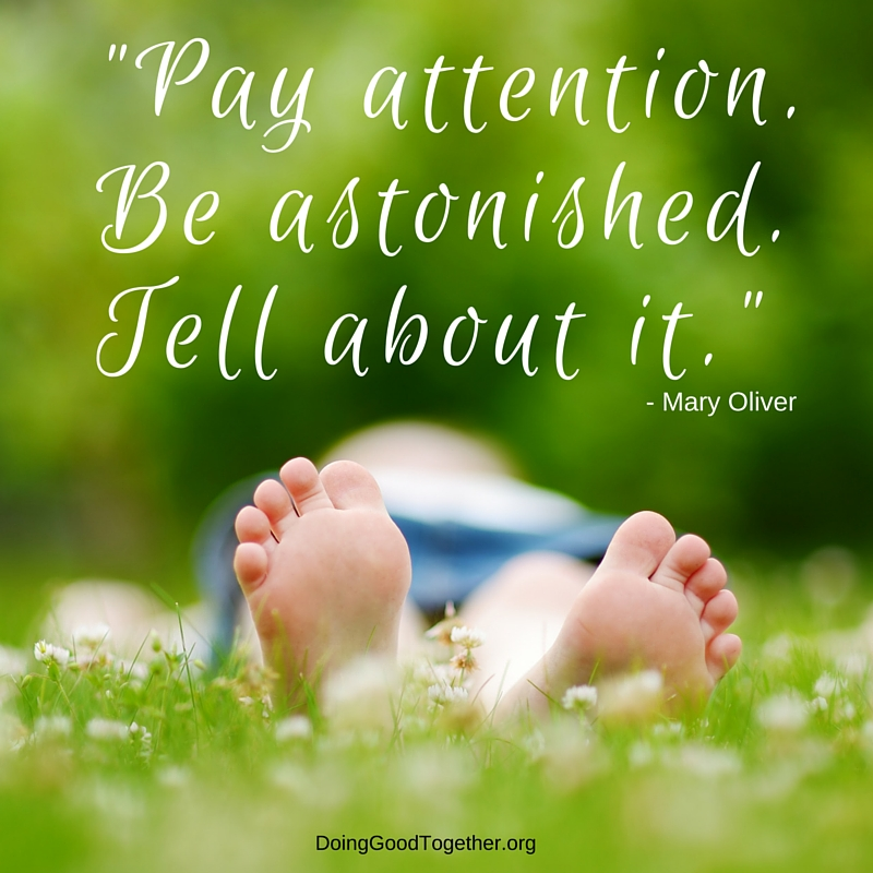 Be curious, be astonished, tell about it... rules for life from Mary Oliver.