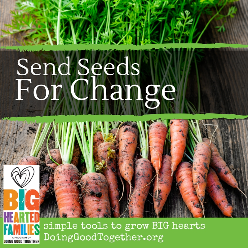 Collect seeds for families who want to start their own gardens.