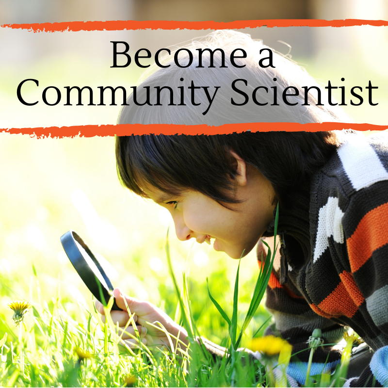Be a Citizen Scientist