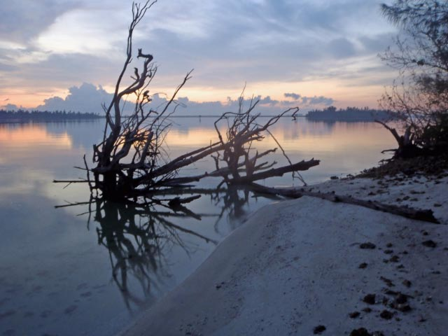 island5.jpg