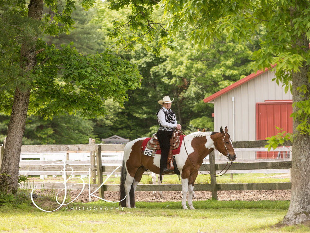 Horse and rider in Middleboro Ma