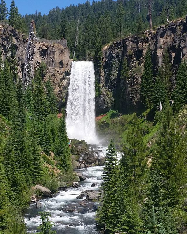 Hiking at Tumalo Falls. . . . #livingwithlocks  #blogging #travelblogging #sunshine #photography #naturalbeauty #naturewalks #naturephotography #hiking #hike #oregon #pnw #oregonnw #roamtheplanet #roam #explore #adventure #gooutdoors #outdoors #go #discover #happy #waterfalls #trees #walks #discoverpnw #wanderlust