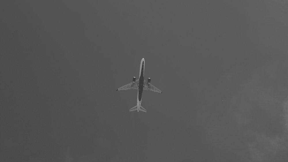 DSC09448.jpg