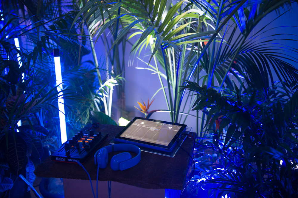 A tech product launch presented through a neon jungle // Client: Microsoft