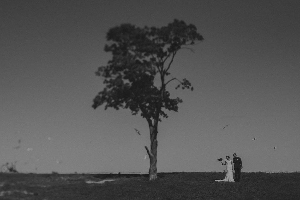 weddingnew-20.jpg