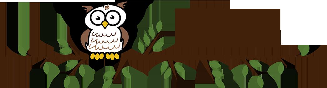 Wise Owl Preschool
