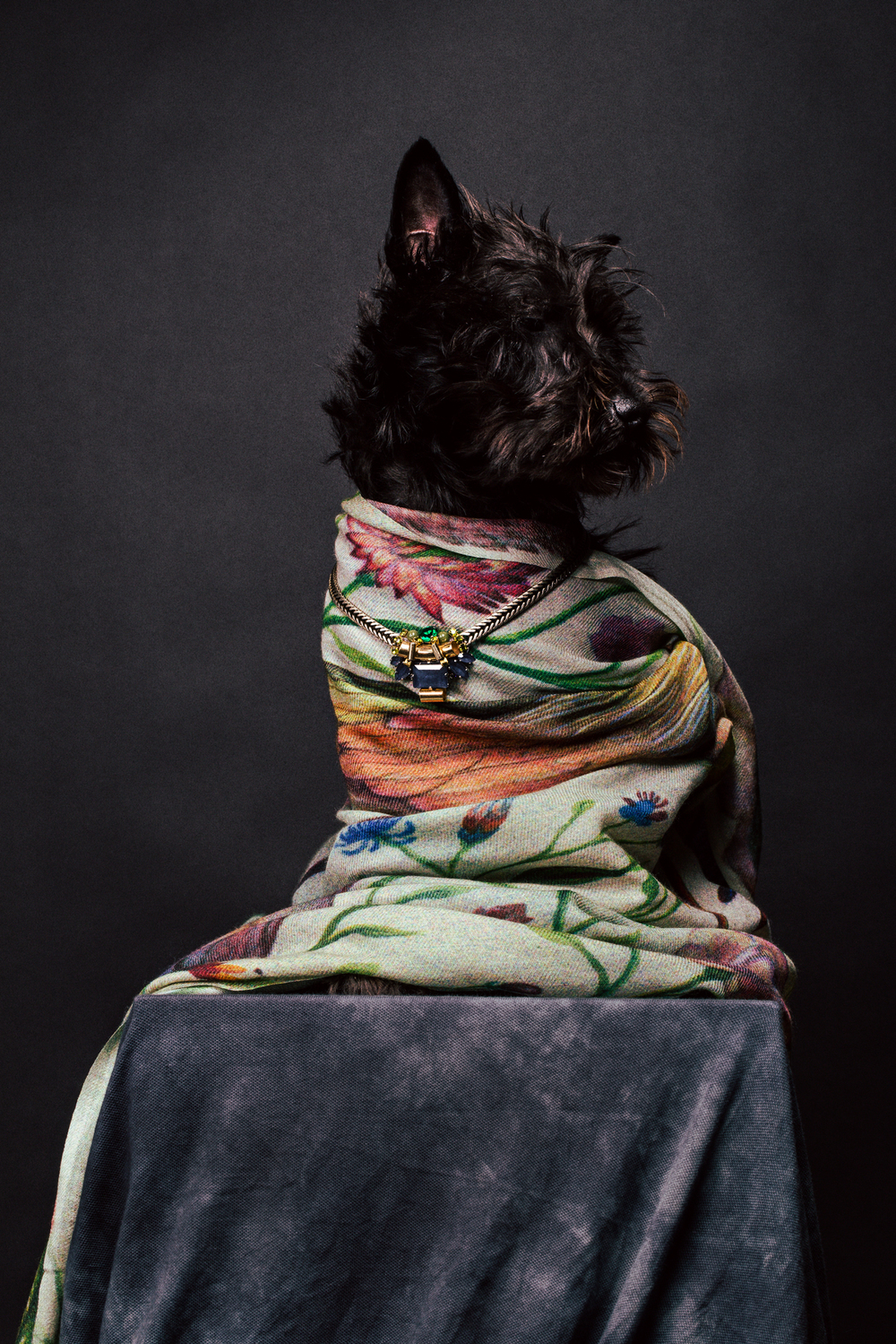 scarf - Paul Smith / necklace - Rada