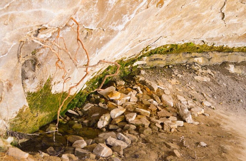 Mesa Verde National Park, Seep Spring    Nikon D3200