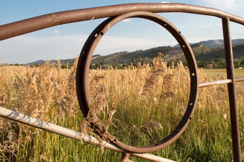 Masonville, CO    Nikon D3200 • Nikon 18-55mm lens • 22mm • F/25 • 1/25s ISO 100