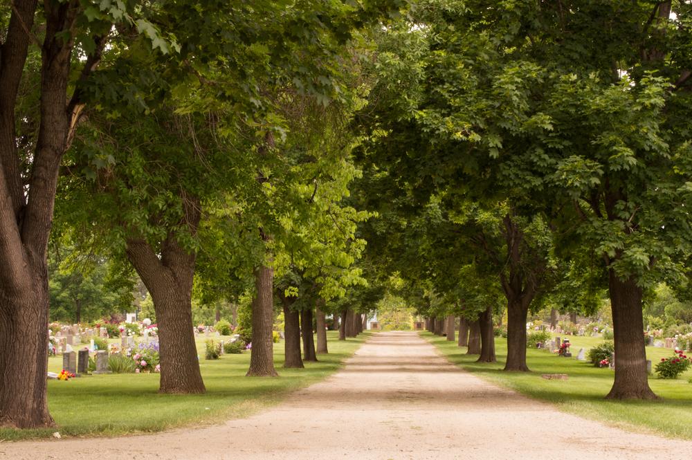 Cemetery, Loveland, CO    Nikon D3200 • Nikon 18-55mm lens • 32mm • F/22 • 1/6s • ISO 100