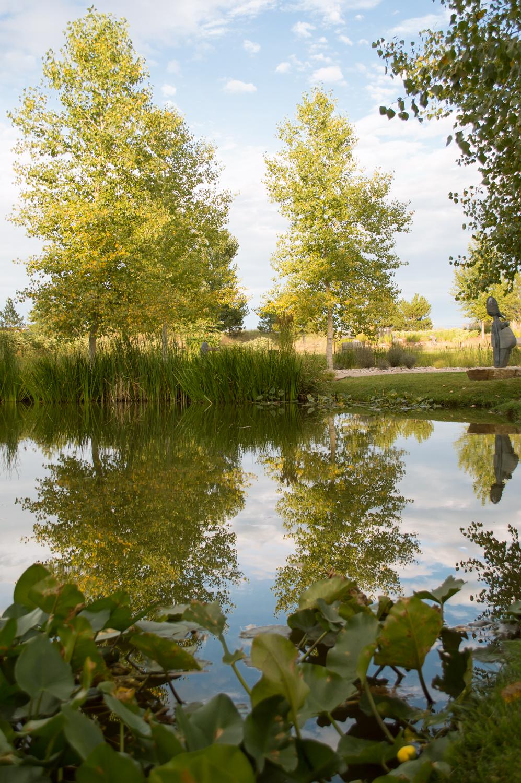 Chapungu Sculpture Garden, Loveland, CO    Nikon D3200 • Nikon 18-55mm lens • 24mm • F/4.5 • 1/20s • ISO 200