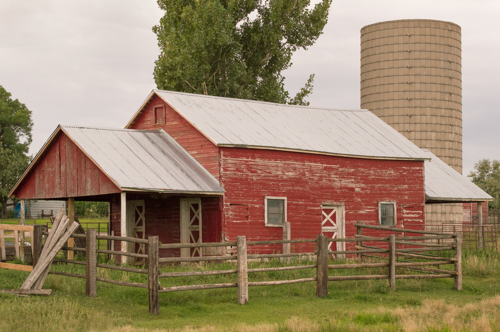 Old Red Barn, South Timberline, Fort Collins    Nikon D3200 • Nikon 18-55mm lens • 48mm • F/10 • 1/320s • ISO 800