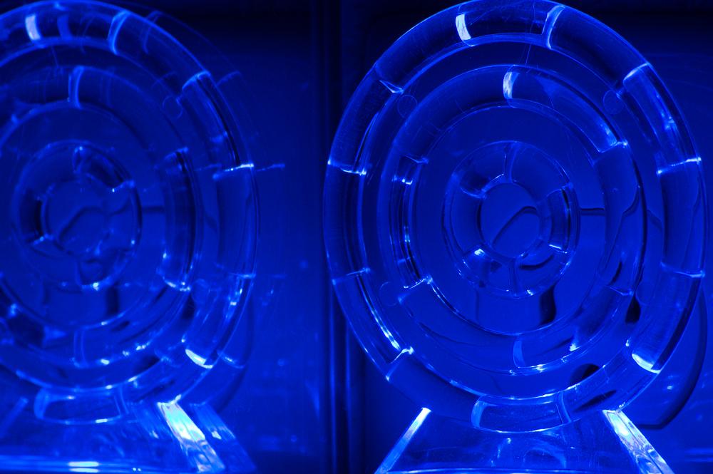 Night Light    Nikon D3200 • Nikon 55-200mm lens • 200mm • F14 • 1/1.3s • ISO 200