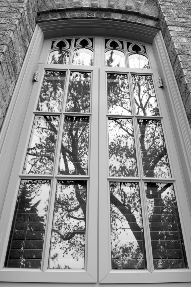 Trees Reflected in Window of Gunter Hall, UNC, Greeley    Nikon D3200 • Nikon 18-55mm lens • 18mm • F/22 • 1/10s • ISO 400