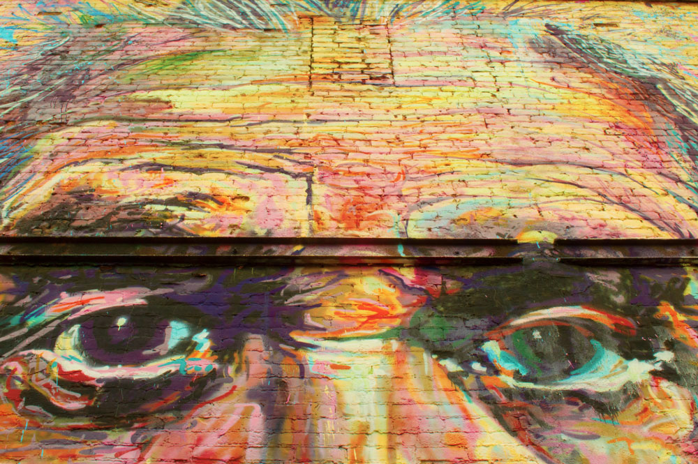 Einstein's Eyes from Mural by Armando Ivan Silva Garcia, Greeley, CO  Nikon D3200 • Nikon 18-55mm lens • 22mm • F/25 • 1/25s • ISO 400