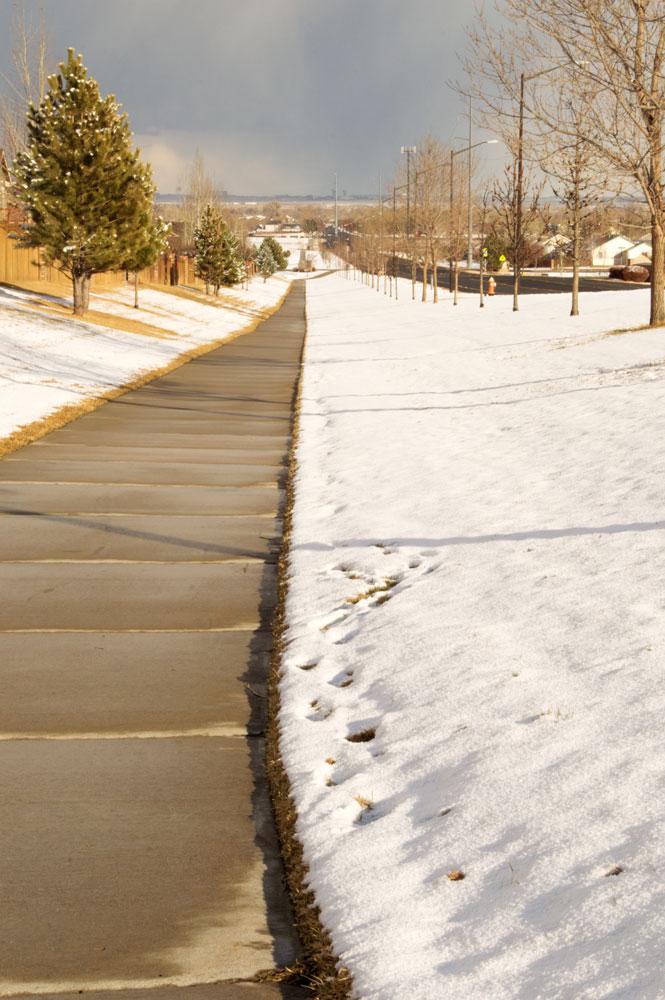 Neighborhood Sidewalk, Enchantment Ridge    Nikon D3200 • Nikon 18-55mm lens • 55mm • F/29 • 1/160s • ISO 400
