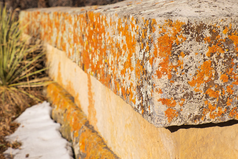 150 Year Old Stone Wall    Fujifilm X-E2 • Fuji XF18-135mm lens • 41.3mm • F/8 • 1/450s • ISO 200