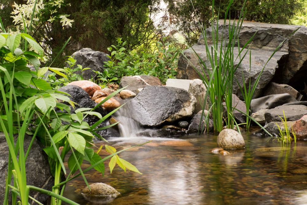 Denver Botanical Gardens    Fujifilm X-E2 • Fuji XF18-135mm lens • 43.9mm • F/22 • .4s • ISO 640