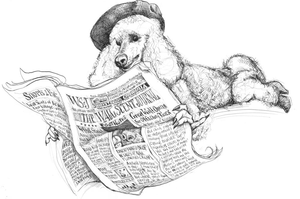 alm-comic1-poodle-raw.jpg