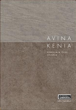 Avina Kenia
