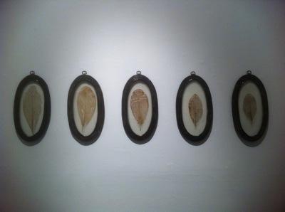 Entropy Frames. 2012. Metal, resin, leaf skeleton.