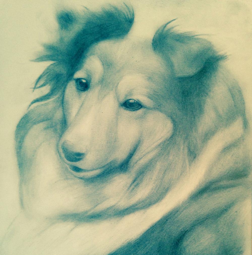 Kenzie, 2015, graphite