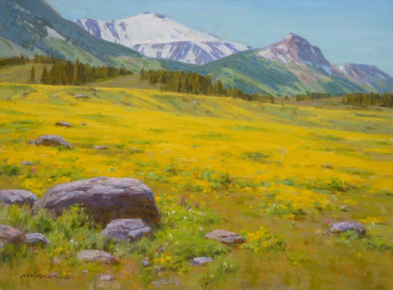 Ned Mueller. GOLDEN MEADOW - BEARTOOTH RANGE. Oil. 18 x 24'