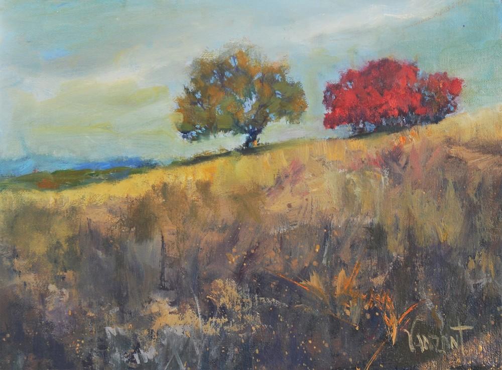 Delaware Landscape