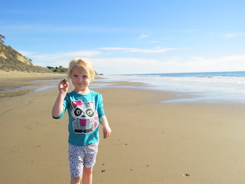 Shell hunting at the beach in Santa Barbara