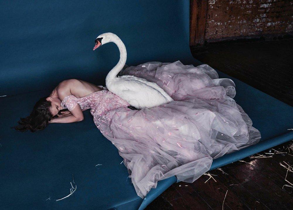 Crista Cober photographed by Kristian Schullerfor Harper's Bazaar Turkey