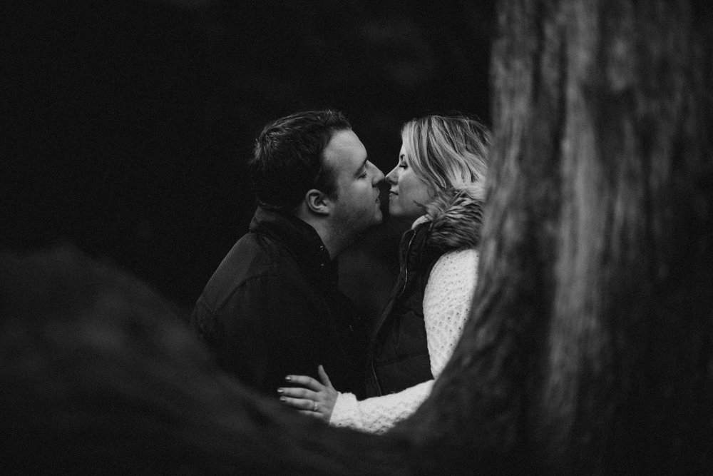 Crawfordsburn Country Park Engagement Photos 29