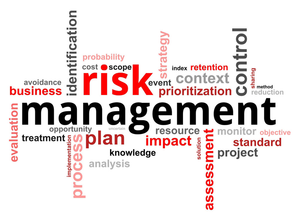 thesis on risk management and insurance