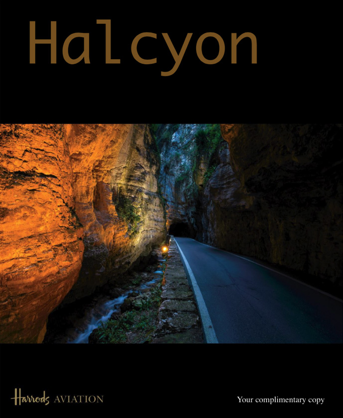 Halcyon_2017_cover.jpg