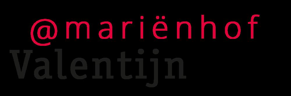 valentijn-3 logo.png