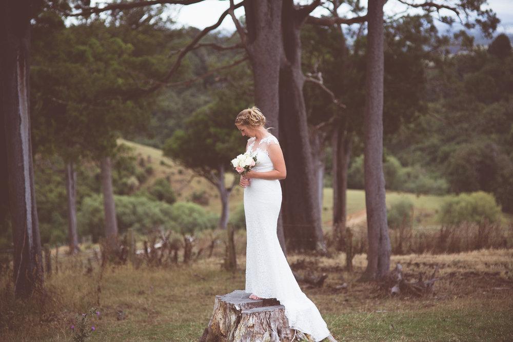 wanaka wedding photographerswanaka wedding photographers File239.jpg